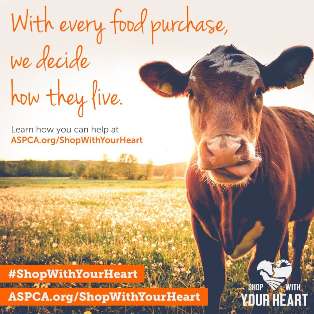 ASPCA Shop With Your Heart