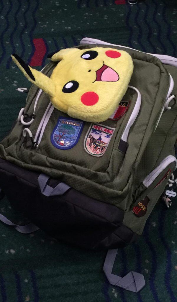 Have Pikachu DS XL Case will travel