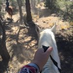 riding the PCT with Baldwin Lake Stables trail ride