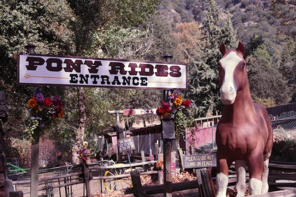 Pony Rides at Oak Glen village