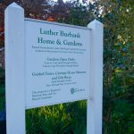 Seedlings and Spirits at the Luther Burbank Home and Gardens